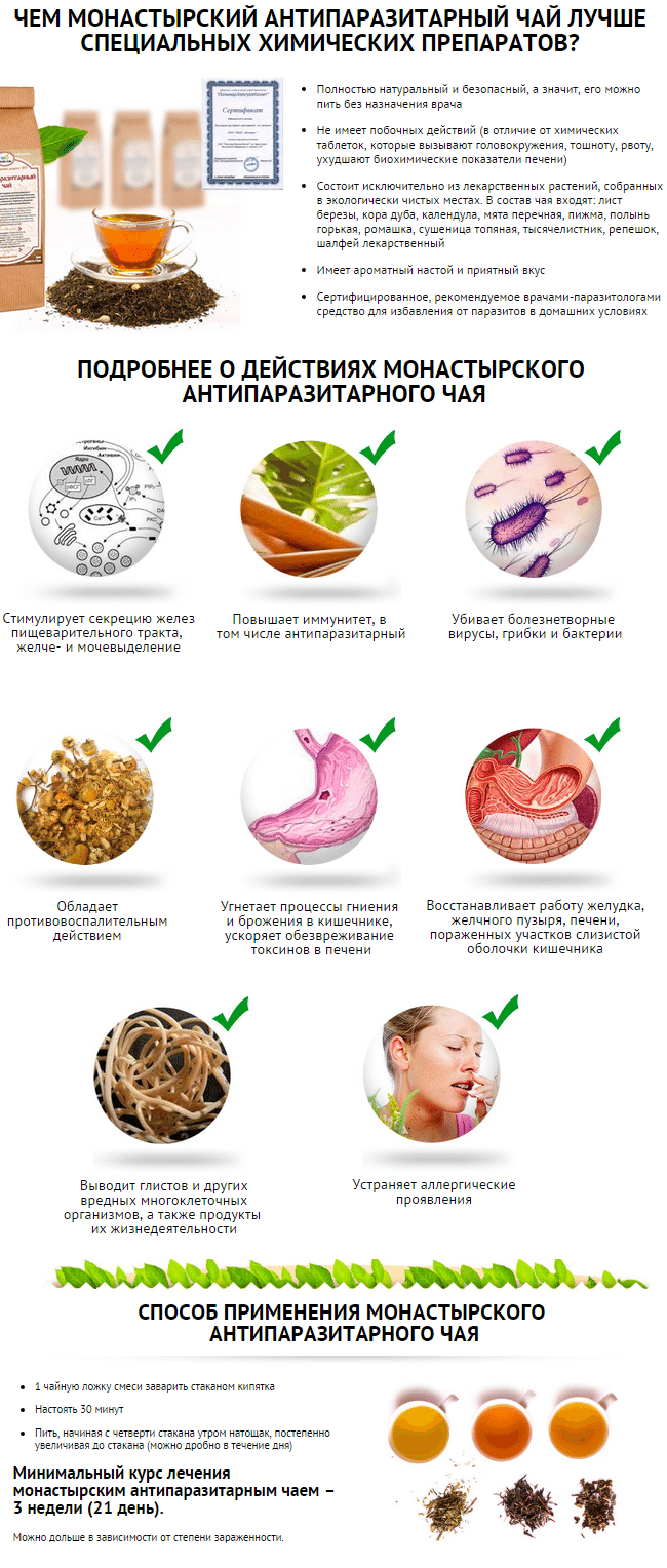чай против паразитов организме